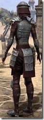 Centurion Dress Armor - Female Back
