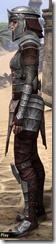 Centurion Dress Armor - Female Side