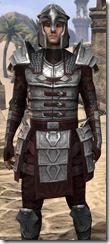 Centurion Dress Armor - Male Close Front