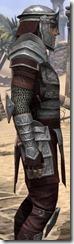 Centurion Dress Armor - Male Close Side
