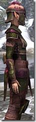 Centurion Field Armor Dyed Close Side