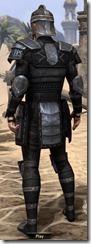 Centurion Field Armor - Male Back