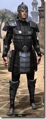 Centurion Field Armor - Male Front