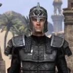 Centurion Field Armor