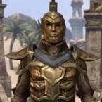 Classic Ordinator Armor