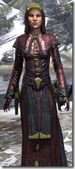 Mages Guild Formal Robes Dyed Close Front