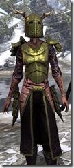 Nedic Duraki Armor Dyed Close Front