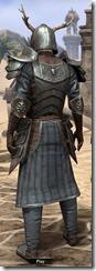 Nedic Duraki Armor - Male Back