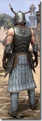 Nedic Keptu Armor - Male Back