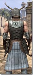Nedic Keptu Armor - Male Close Back