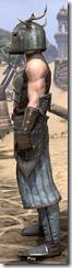 Nedic Keptu Armor - Male Side