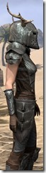Nedic Perena Armor - Female Close Side