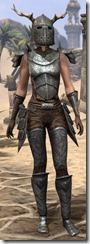 Nedic Perena Armor - Female Front
