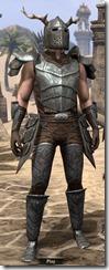 Nedic Perena Armor - Male Front