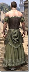 Off-the-Shoulder Evening Dress - Male Back