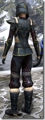 Orcisg Scout Armor Dyed Back
