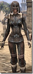 Orcisg Scout Armor - Female Close Front