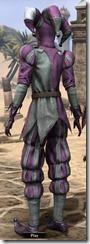 Royal Court Jester - Female Back