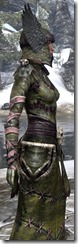 Winterborn Shaman's Costume Dyed Close Side