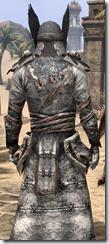 Winterborn Shaman's Costume - Male Close Back