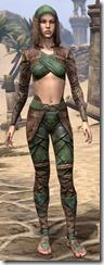 Wood Elf Vanguard - Female Front