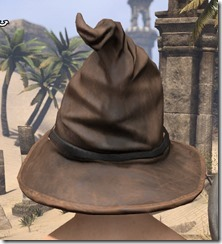Clever Man Wizard Hat - Male Back