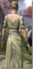 Cyrod Patrician Formal Gown Dyed Close Back