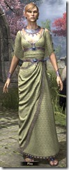 Cyrod Patrician Formal Gown Dyed Front