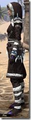 Stahlrim Frostcaster Robe - Female Side