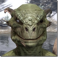 Blind Right Eye Argonian