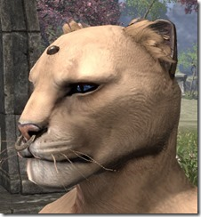 Nose Ring and Head Stud Khajiit Male 2