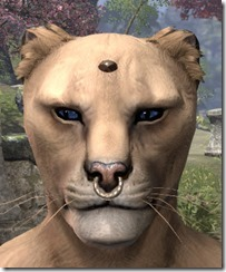 Nose Ring and Head Stud Khajiit Male