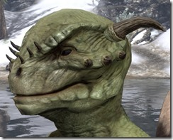 Small Brow Spines Argonian 2