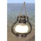 Common Lantern, Hanging