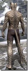 Jaguar Rosettes - Male Back