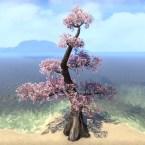 Tree, Tiered Light Cherry