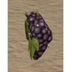 Grapes, Wax