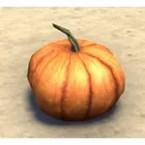 Pumpkin, Display