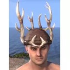 14-Point Antler Skullcap