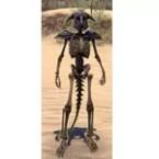 Target Skeleton, Robust Argonian