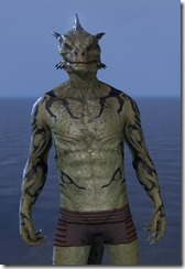Wyrd Root Tattoos - Argonian Front