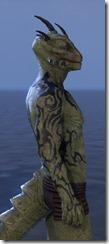 Wyrd Root Tattoos - Argonian Side