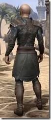 Austere Warden - Male Back