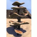 Mushrooms, Buttercake Stack