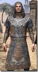 Telvanni Wizard-Lord Robe - Male Close Front