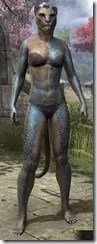 Warrior-Poet Tattoos - Khajiit Front