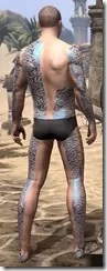 Warrior-Poet Tattoos - Male Back
