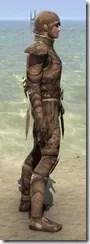 Phaer Mercenary - Male Side