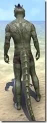 Clockwork Apostle Body Imprints - Argonian Back