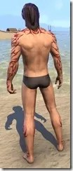 Dremora Kyn Body Tattoo - Male Back